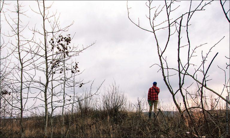 Прогулка по окраинам: Шейна - ТЭЦ 2 - Киселёвка