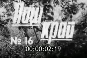 Киножурнал «Наш край» 1985 № 16, Смоленск