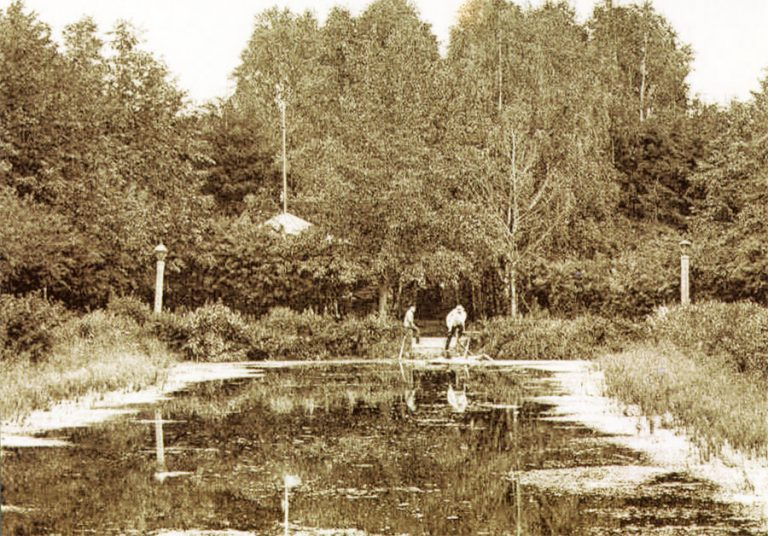 Город Гжатск. Пруд в городском саду.Открытка начала XX века
