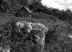 Остаток фундамента дома, в котором жили Шнеерсоны с 1813 по 1915 годы.