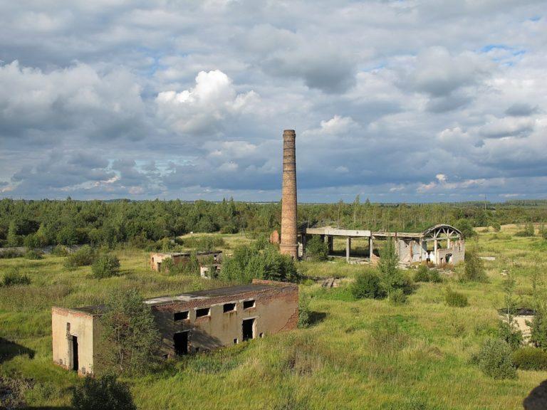 Демидов: завод не работает, техникум не учит