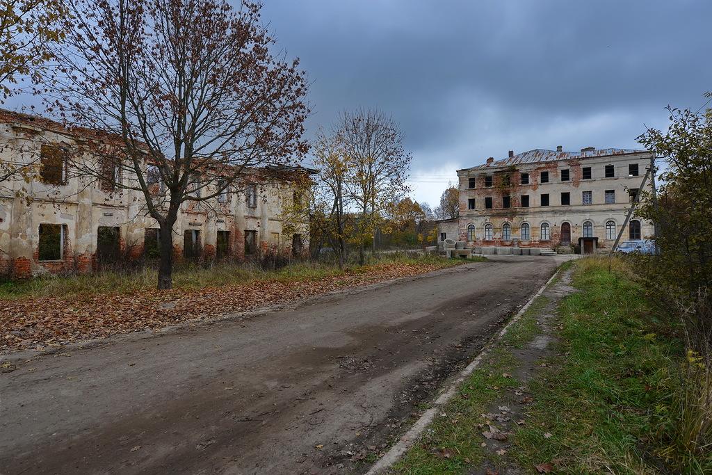 Усадьба графа Орлова-Денисова в деревне Васильевское Тёмкинского района