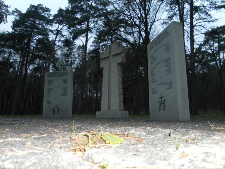 Немецкое кладбище времён оккупации в Нижней Дубровенке