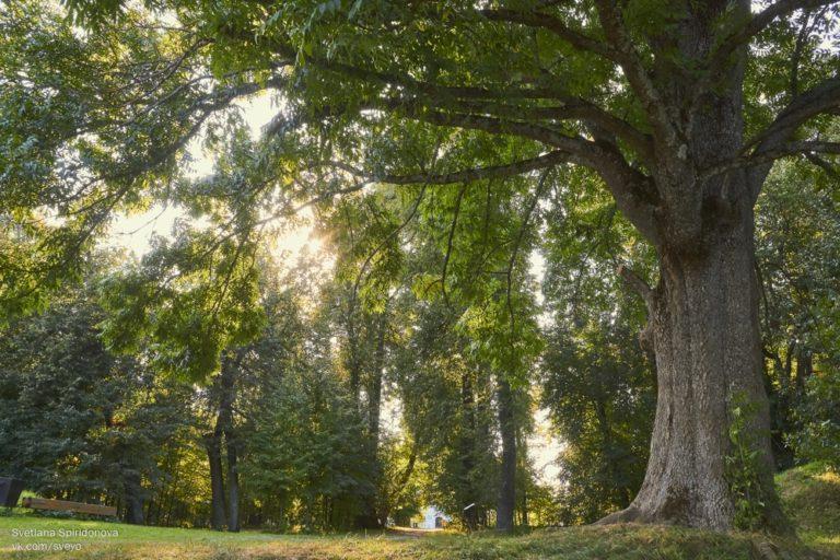 Последние деньки лета в Хмелите