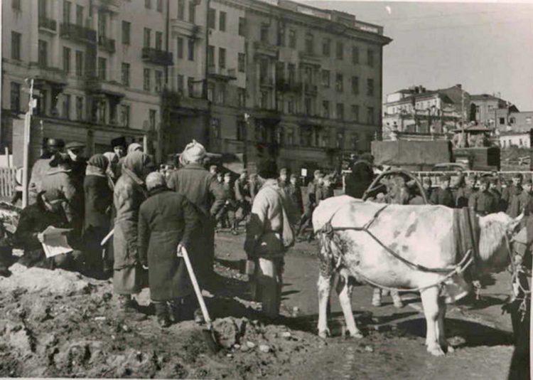 Новый порядок, каким он был. Сентябрь 1941 года в документах и фотографиях